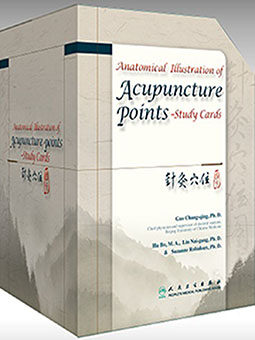 Anatomical Illustration of Acupuncture Points Study Cards boxed set image